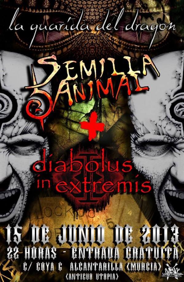 SemillaAnimal_Murcia_15-6-13_Cartel