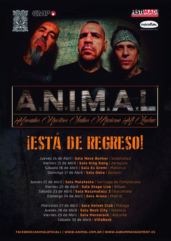 ANIMAL_tour2016