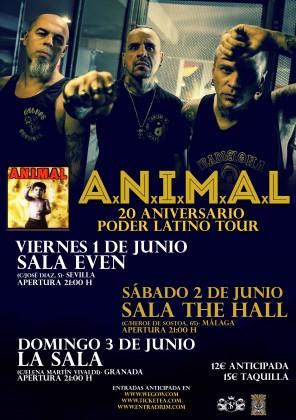 ANIMAL_gira_conjunta_andalucia