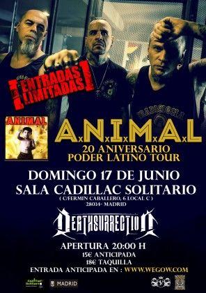 Madrid (12)A.N.I.M.A.L_cartel