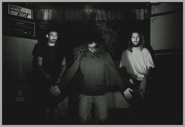 The Dry Mouths promo1