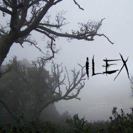 ILEX – ILEX