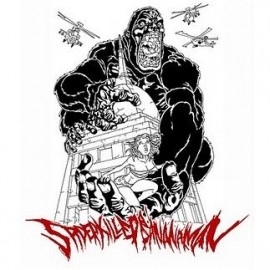SPIDER KILLED BANANAMAN – DEMO 2010