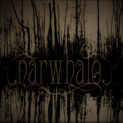 NARWHALE – NARWHALE