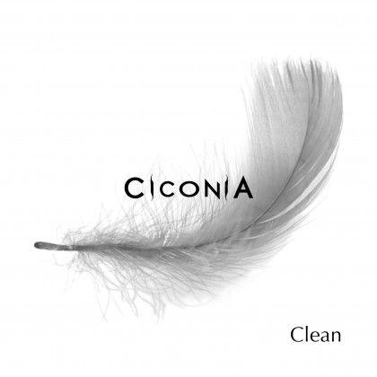 CICONIA – CLEAN