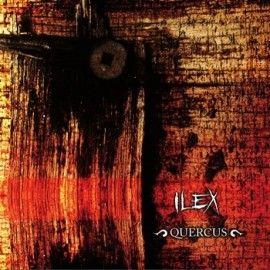 ILEX – QUERCUS